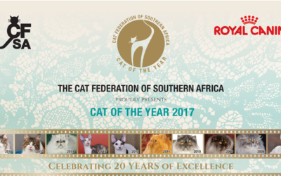 We have qualified for CFSA COTY 2017!