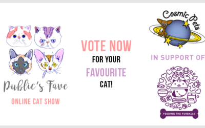 Vote for our cats in the Public's Fave Online Cat Show